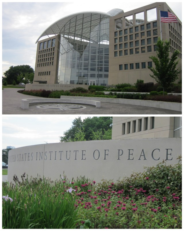 Institute for peace
